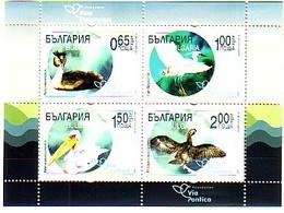 BULGARIA \ BULGARIE - 2019 - Ecology - Route Migratoire Des Oiseaux VIA PONTICA - Bl Limite - Bulgaria