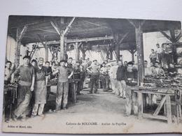 Bologne  La Colonie - France