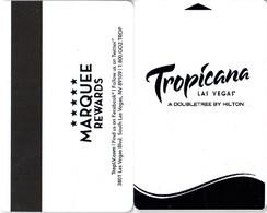Rio Las Vegas Carnival World Buffet --2475---   Key Card, Room Key, SchLusselkarte, NEW -- 2475 - Cartes D'hotel
