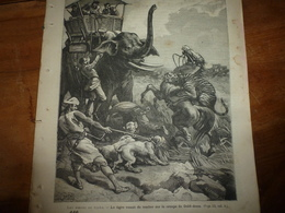 1886: La Gravure  De ----> CHASSE  Au TIGRE ; Etc - Vieux Papiers