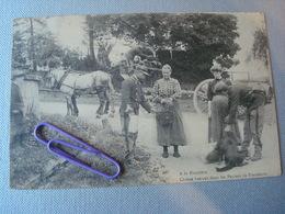 A La Frontière : Chiens Flairant Dans Les Paniers De Fraudeurs En 1910 - Douane