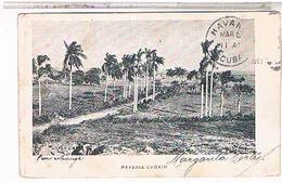 CUBA PAYAGE CUBAIN   1903  US180 - Cuba