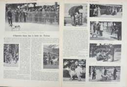 L'exposition Canine Dans Le Jardin Des Tuileries - Basset - Barso - Montagne Des Pyrénées - Page Originale Double 1901 - Documents Historiques