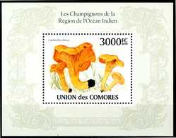 COMORES 2010** - Funghi / Mushrooms - Miniblock MNH, Come Da Scansione. - Funghi
