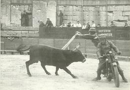 13 ARLES PHOTO GEORGE TOREO A MOTO PABLO AREZTA 1940 TAUREAU ARENES CAMARGUE BOUCHES DU RHONE - Arles