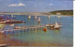 007154  Sailing Races At Stage Harbour Chatham, Cape Cod  1953 - Cape Cod