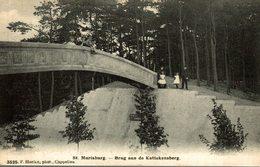 Tres Rare   Sint-Mariaburg - Brug Aan De Kattekensberg - Brasschaat