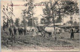 52 - VOUECOURT --  Forêt D'Heu - Frankrijk