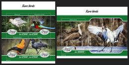 SIERRA LEONE 2019 - Rare Birds. M/S + S/S Official Issue. - Sierra Leone (1961-...)