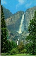 007161  Yosemite Falls From The Meadows - Yosemite
