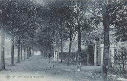 Ath - Allée De L'Esplanade (animée, SBP N° 27, 1908) - Ath