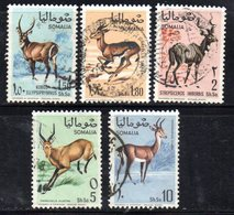 XP3372 - SOMALIA 1968 , Yvert N. 91/95  Usata . Fauna - Somalia (1960-...)