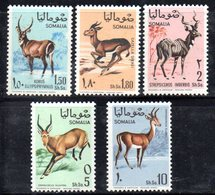 XP3675 - SOMALIA 1968 , Yvert N. 91/95  ***  MNH . Animali - Somalia (1960-...)