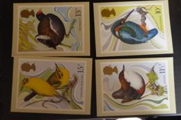 GREAT BRITAIN [UK] SG 1109 WILD BIRD PROTECTION ACT CENTENAY POSTMARK WINDSOR PHQ - Maximum Cards