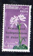 XP3688 - SOMALIA 1960 ,  Yvert N. 1  ***  MNH  Indipendenza - Somalia (1960-...)