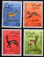 XP3792 - SOMALIA 1967 ,  Yvert N. 62/65 ***  MNH  Gazelle - Somalia (1960-...)