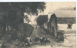 Houffalize - Château De Tavigny - Ern. Thill Série 11 No 5 - 1924 - Houffalize