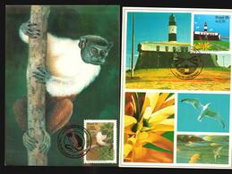 Brazil 2 Different Maxi Cards Maximum Monkey Ape Lighthouse (A_4269) - Leuchttürme
