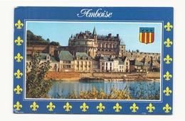 AMBOISE LE CHATEAU 37 - Amboise