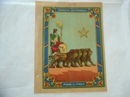 1900 PUBBLICITà TABASSO VOLTERRA COMMERCIO COLONIE INDIA BOMBAY AEQVITAS LEONI - Publicité