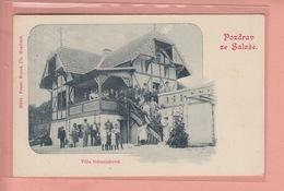 OLD POSTCARD - CZECH REPUBLIC -   POZDRAV ZE SALASE - VILLA SCHANIAKOVA  1900'S - Czech Republic