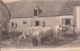 276 EN BEAUCE RETOUR A LA FERME (SOURS FERME PREVOSTEAU) - France
