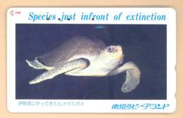 Japan Telefonkarte - Schildkröte , Turtle - Siehe Scan -4671 - Schildkröten