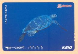 Japan Prepaidkarte - Schildkröte , Turtle - Siehe Scan -4675 - Schildkröten