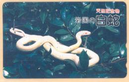 Japan Prepaidkarte - Schlange  - Siehe Scan -4678 - Dschungel
