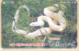 Japan Prepaidkarte - Schlange  - Siehe Scan -4679 - Dschungel