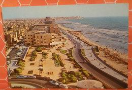 Tel Aviv Sea Front Israele Cartolina Non Viaggiata - Israele