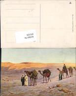 601326,Egypt S. Zullo Kamele Kamel Kairo Karawane - Ägypten