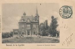 CPA - Belgique - La Louvière - Château De Monsieur Guyaux - La Louvière