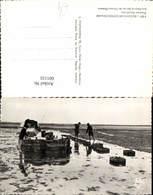601131,Foto Ak Bassin D Arcachon Gironde Travaux Ostreicoles Muschel Fischerei Fische - Fischerei