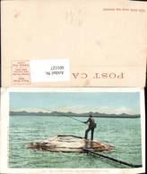 601127,Fish Pot Hot Springs Yellowstone National Park Fischen Fischerei Fischen - Fischerei