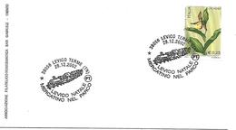 SG0248 - ANNULLO LEVICO - NATALE - MERCATINO NEL PARCO.-  28.12.2002 - 6. 1946-.. Repubblica