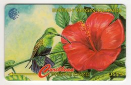 ILES VIERGES BRITANNIQUE CARAIBES CABLE & WIRELESS REF MV CARDS BVI-67A  CN : 67CBVA 1996 HUMMING BIRD - Virgin Islands