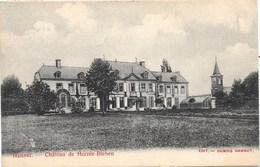 Hannut NA8: Château De Herzée-Blehen 1909 - Hannut