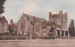 241693Limerick, 13 Th Century Trinitarian Abbey. - Limerick