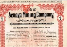Titre Ancien - The Arnoya Mining Company - Titre De 1909 - - Mines