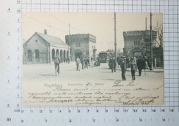 GERMANY - Magdeburg, 1904 - VINTAGE PHOTO POSTCARD - (APAT2-99) - Magdeburg