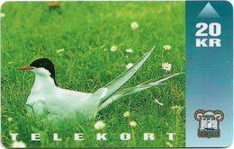 Faroe - Faroese Telecom (Magnetic) - Arctic Tern Bird - 20Kr. - 15.000ex, Used - Faroe Islands