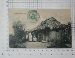TRINIDAD - Indian Native Hut, 1909.- Vintage Photo POSTCARD - (APAT2-72) - Cartes Postales