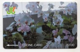 JAMAIQUE REF MV CARDS JAM-11D 100$ Annee 1993 CN : 11JAMD WHITE ORCHIDEE - Giamaica