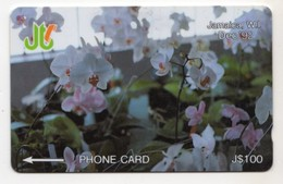 JAMAIQUE REF MV CARDS JAM-11D 100$ Annee 1993 CN : 11JAMD WHITE ORCHIDEE - Jamaica
