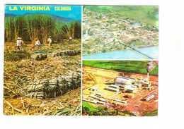 Colombia Colombie La Virginia Virginie Recolte Cane à Sucre Vue Aerienne Ville Usine De Risaralda - Kolumbien