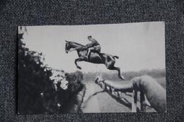 Equitation - Cavalier à L'entrainement. - Cartes Postales