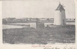 TRAPANI-LE SALINE-CARTOLINA  VIAGGIATA IL 22-9-1904 - Trapani