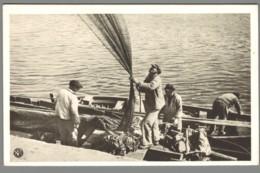 CPSM 29 - Audierne - Préparatifs Pour La Pêche - Audierne