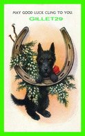 DOG, CHIEN - BEAU CHIEN ANGLAIS  AVEC FER À CHEVAL - MAY GOOD LUCK CLING TO YOU - MILLAR & LANG LTD - ÉCRITE - - Chiens